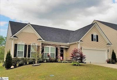 Simpsonville Single Family Home For Sale: 260 Chapel Hill