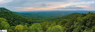 Greenville Residential Lots & Land For Sale: 159 Old Altamont Ridge