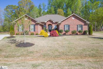 Anderson Single Family Home For Sale: 128 Baybrooke