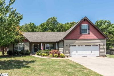Greenville Single Family Home For Sale: 19 Upper Meadow