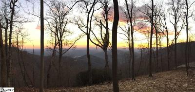 Travelers Rest Residential Lots & Land For Sale: 1399 Mountain Summit