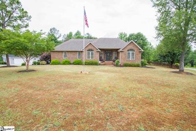 Anderson Single Family Home For Sale: 100 Woods