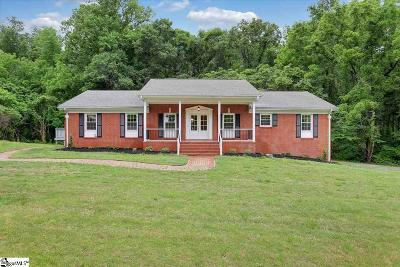 Easley Single Family Home For Sale: 314 Turner Hill
