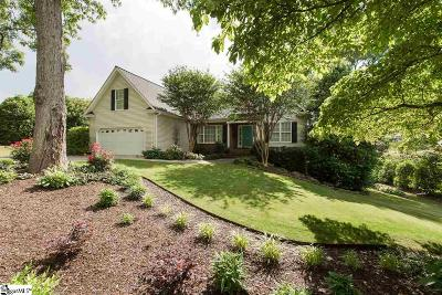 Greenville Single Family Home For Sale: 223 Donington