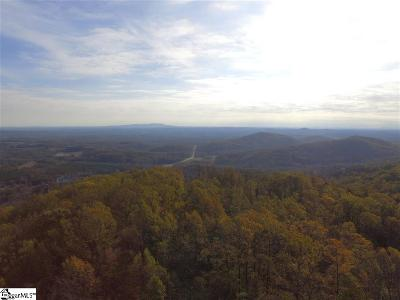 Greenville County Residential Lots & Land For Sale: 73 Needle Cragg