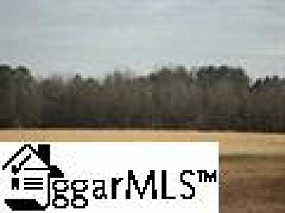 Easley Residential Lots & Land For Sale: Pelzer