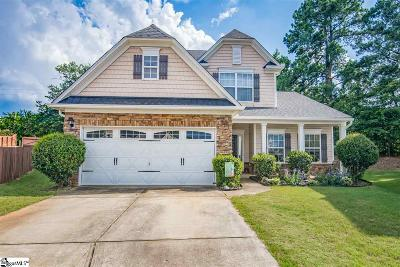 Greenville County Single Family Home For Sale: 112 Circle Grove