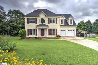Greenville County Single Family Home For Sale: 107 Hadrian