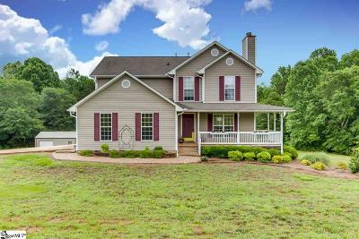 Easley Single Family Home For Sale: 729 Zion School