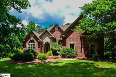 Spartanburg Single Family Home For Sale: 807 Inverness