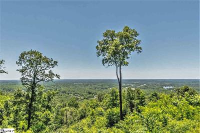 Greenville Residential Lots & Land For Sale: 50 Grand Vista