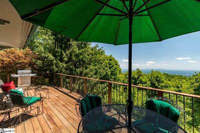 The Cliffs At Glassy, The Cliffs At Keowee, The Cliffs At Keowee Falls, The Cliffs At Keowee Falls North, The Cliffs At Keowee Falls South, The Cliffs At Keowee Springs, The Cliffs At Keowee Vineyards, The Cliffs At Mountain Park, Cliffs Valley Single Family Home For Sale: 108 May Apple