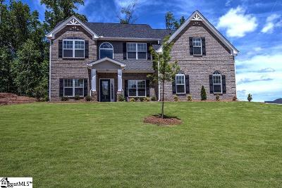 Easley Single Family Home For Sale: 120 James Lake