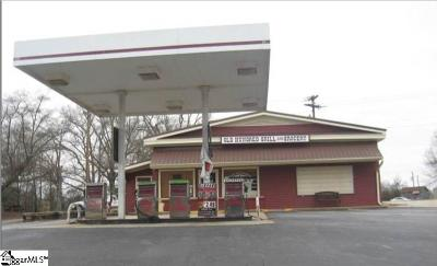 Greenville County Commercial For Sale: 599 Old Hundred