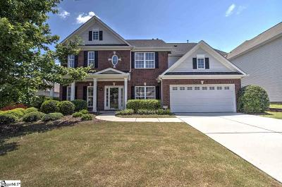 Greenville County Single Family Home For Sale: 916 Kangley