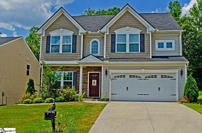Simpsonville Single Family Home For Sale: 260 Chestatee