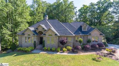 Greenville Single Family Home For Sale: 9 Celriver