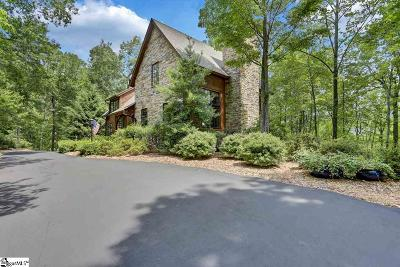 Travelers Rest Single Family Home For Sale: 201 Sedgewick