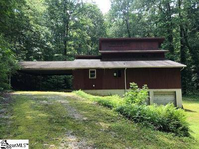 Travelers Rest Single Family Home For Sale: 79 Dividing Water
