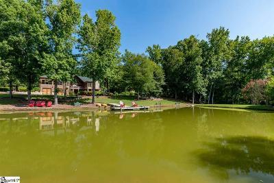 Greenville, Greer, Mauldin, Simpsonville, Travelers Rest Single Family Home For Sale: 650 Hammett