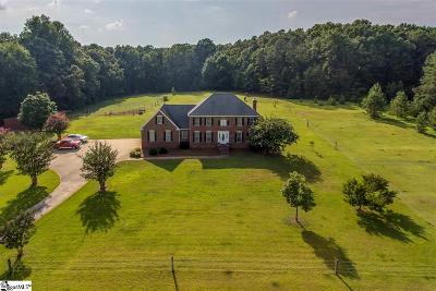 Easley Single Family Home For Sale: 234 S McAlister