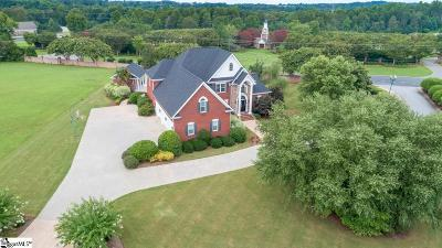 Easley Single Family Home For Sale: 102 Chesire
