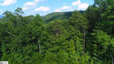 Travelers Rest Residential Lots & Land For Sale: 3023 N 25