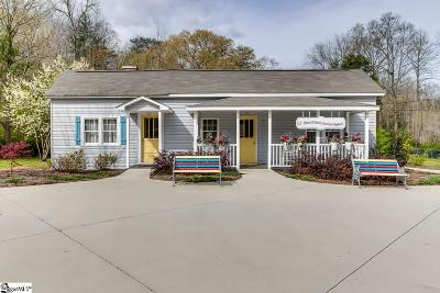 Travelers Rest Single Family Home For Sale: 2325 N Highway 25