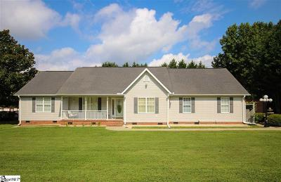 Easley Single Family Home For Sale: 740 Pope Field