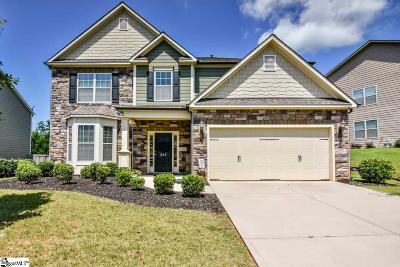 Greenville County Single Family Home For Sale: 249 Raven Falls