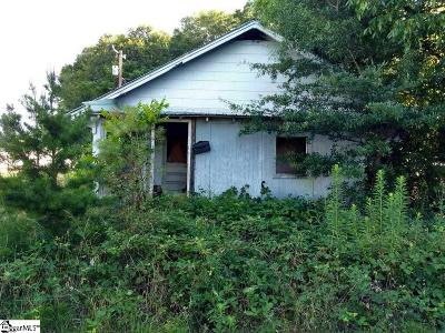 Greenville County, Spartanburg County Single Family Home For Sale: 258 Boundary