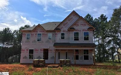 Easley Single Family Home For Sale: 302 S Harvest Moon