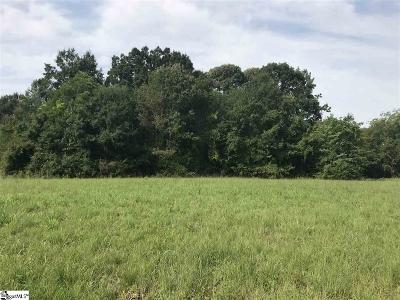 Spartanburg Residential Lots & Land For Sale: 634 Mount Pleasant