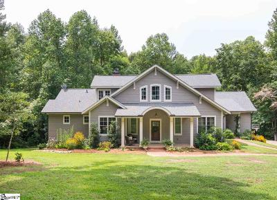 Greenville County Single Family Home For Sale: 50 Pleasant Valley