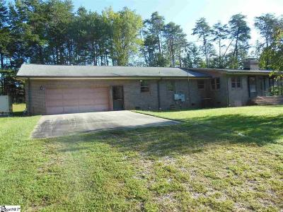 Easley Single Family Home For Sale: 343 Pace Valley