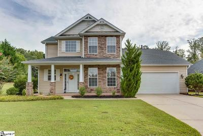 Greenville County Single Family Home For Sale: 101 Finley Hill