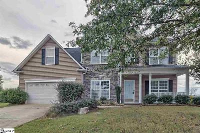 Simpsonville Single Family Home For Sale: 19 Cartecay