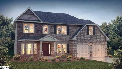 Easley Single Family Home For Sale: 117 James Lake