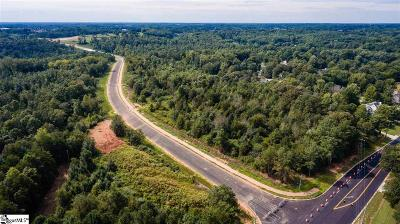 Easley Residential Lots & Land For Sale: S Side Saluda Dam