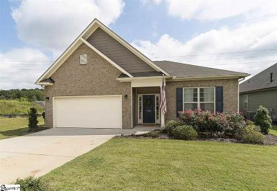 Greenville Single Family Home For Sale: 234 Reedy Springs