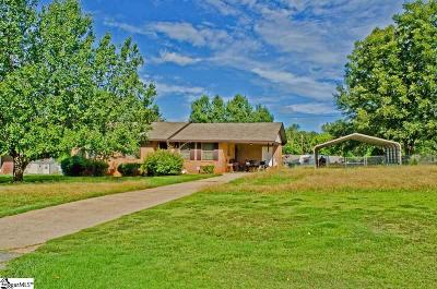 Anderson Single Family Home For Sale: 114 Terrace