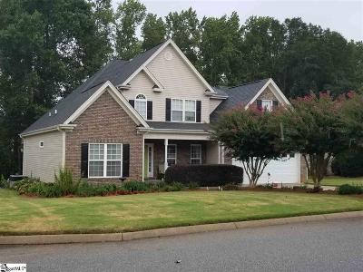 Greenville Single Family Home For Sale: 9 Shannon Creek
