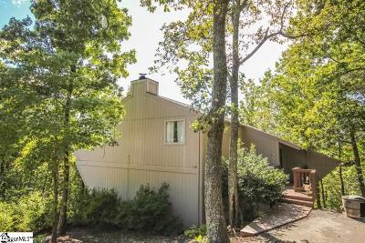 Greenville County Single Family Home For Sale: 12 Altamont Forest