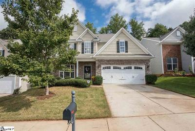 Greenville County Single Family Home For Sale: 16 Knoll Ridge