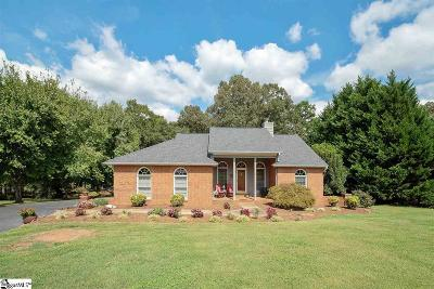 Anderson Single Family Home For Sale: 106 Streater