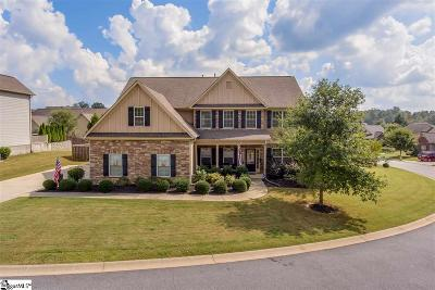 Simpsonville Single Family Home For Sale: 14 Copperdale