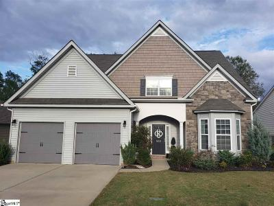 Easley Single Family Home For Sale: 502 Cardiff