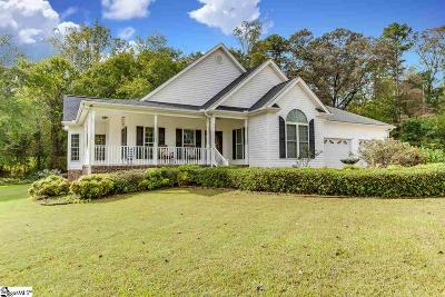 Easley Single Family Home For Sale: 220 Mercury