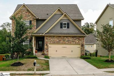 Simpsonville Single Family Home For Sale: 124 Raven Falls