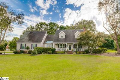 Easley Single Family Home For Sale: 302 Medinah